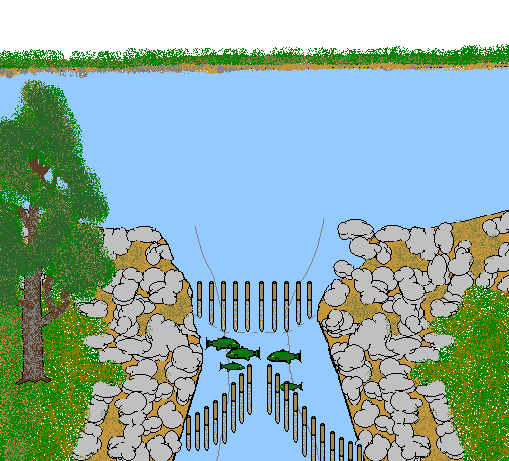 Fishing Weir in River - Fish Trap